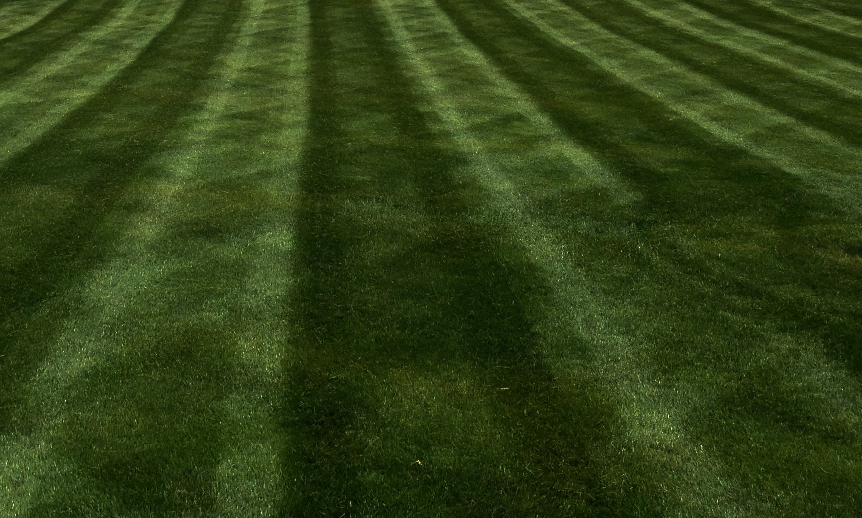 How To Make Your Lawn Green Naturally